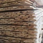 外墙板 俄罗斯樟子松木家具装饰板材松木板型材防腐木加工批发