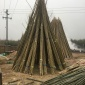 供应各种规格尺寸竹竿竹棒竹节竹筒,量大价优,品质保证!