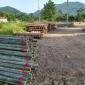 竹梢大量现货供应 品质保障规格齐全 7-10m 量大从优 可按需定制